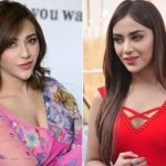 Angela Krislinzki Plastic Surgery Before and After